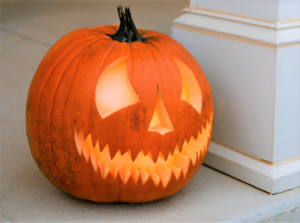 Boo at the Zoo: New Bedford