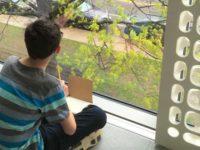 "Virtual ""Beyond The Spectrum"" Art Classes for Teens 13-18"