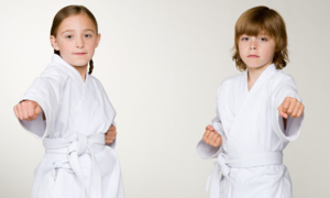 Inclusive Virtual Karate for Weymouth Area Families