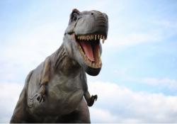 Family-Friendly Jurassic Quest Drive-Thru in Foxboro